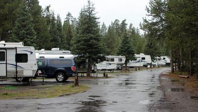 Do RV Parks Charge for Electricity?