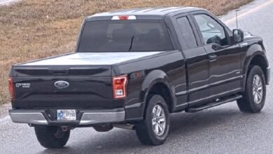 Why Are Ford Trucks Stolen So Much?