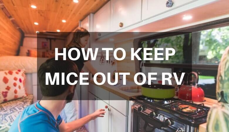 How to Keep Mice Out of RV During Winter Storage?